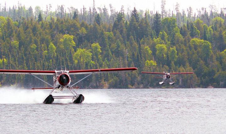 fly71